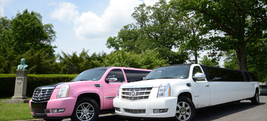 pink and white limo